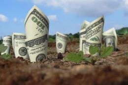 Цьогорічний приріст рентабельності агровиробництва буде знівельований збільшенням його собівартості, - фермер