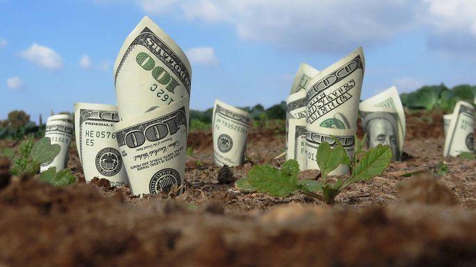 Середня вартість землі зростає, - Роман Лещенко