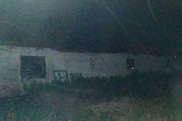 На Запоріжжі під час пожежі загинуло 180 поросят