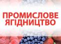 Міжнародний форум «Промислове ягідництво — 2019»