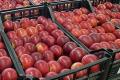 Яблука, призначені для ринку дешевшають, для супермаркету – дорожчають