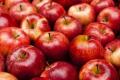 Українські яблука – одні з найдешевших в світі
