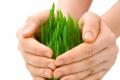 Зміна клімату стає викликом для розробників засобів захисту рослин, - думка