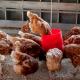 Сухий холіну хлорид небажано додавати у висококонцентровані вітамінні суміші для птиці
