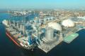«НІБУЛОН» хоче збудувати ще один зерновий термінал у Миколаєві