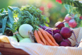 Овочі борщового набору значно подешевшали за рік