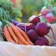 Експертка назвала 5 факторів, що вплинуть на ціну овочів