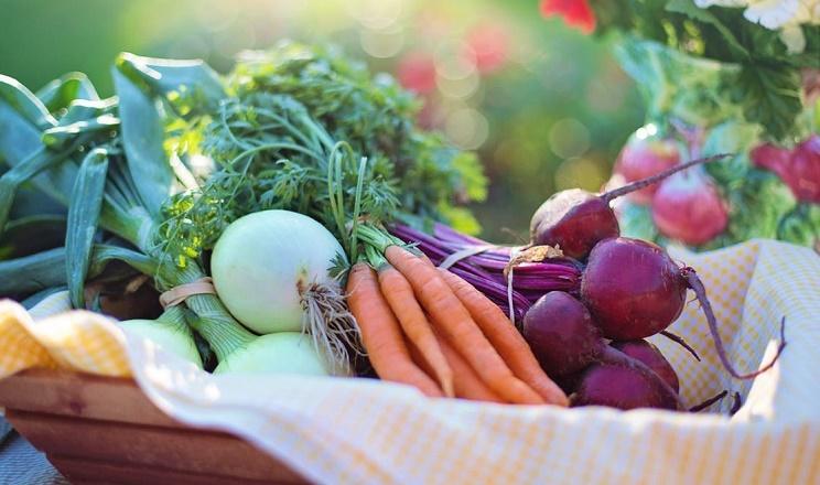 Ситуація з фальсифікованим насінням овочів в Україні дещо покращилась