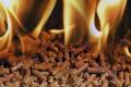 Зернові відходи Семенівського елеватору «Астарти» переробляють на паливні пелети
