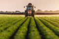 Вітчизняні аграрії внесли ЗЗР на площі понад 0,6 млн. га