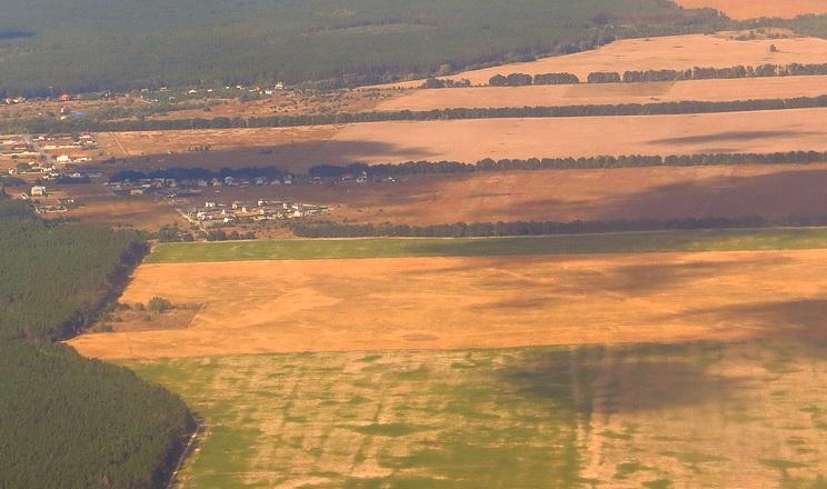 Держгеокадастр почав оприлюднювати висновки про розгляд проєктів землеустрою щодо відведення землі