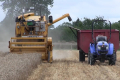 Ферма майбутнього буде автономною