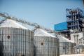 Лутовинівський елеватор «Астарти» з початку сезону перевалив більше 200 тис. тонн зерна
