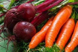 На ринку спостерігається надлишок моркви та буряка