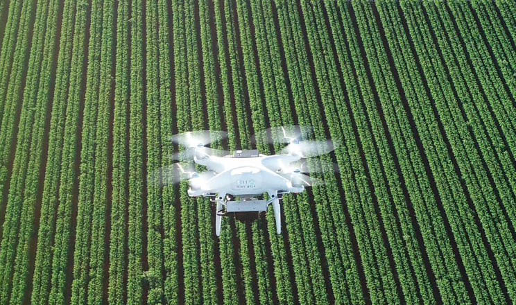 Sony вдосконалює програмне забезпечення Smart Agriculture Solution