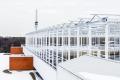 У Канаді будують найбільшу в світі теплицю на даху
