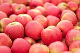 6 сортів прагнуть повторити успіх яблук Pink Lady