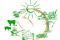 Потужності біогазових станцій на агровідходах за рік зросли на 67%