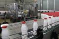 Українське молоко й молокопродукти експортуватимуть до Лівії