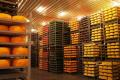 За 10 місяців Україна імпортувала втричі більше сирів, ніж експортувала