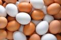 Яйця трохи зросли в ціні