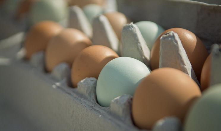 За три місяці експорт яєць скоротився на 32%