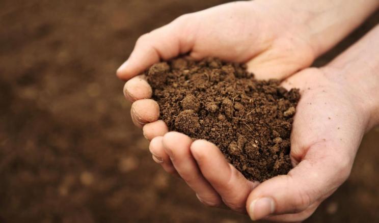 Аналіз ґрунту є фундаментальним кроком у точному землеробстві: досвід «Кернела»