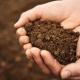 Збитки від втрати гумусу в Україні за 20 років становлять понад 450 млрд грн, - науковці
