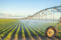 Перш ніж інвестувати у зрошення, слід урахувати умови користування землею, - фермер