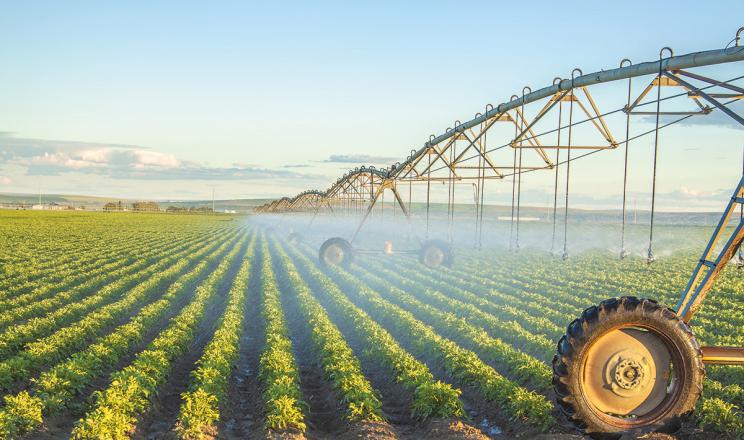 На Донеччині площа зрошувальних земель скоротилася до 4,7 тис. га