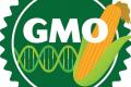 ЄС дозволив використання восьми ГМО-сільгоспкультур