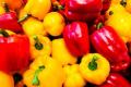 Фермер розповів про особливості вирощування солодкого перцю на Черкащині