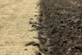 Лише 10% загорнутої в ґрунт соломи проходить процес гуміфікації