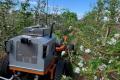 SwarmFarm та Green Atlas розробляють робота для проріджування яблуневих квітів