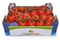 Тепличники продають томати вдвічі дорожче, ніж торік