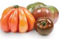 Органічні фермери дивують покупців незвичними томатами