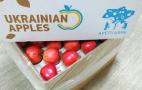 Щоб задовольнити попит Північної Європи та Азії, українські експортери докуповуватимуть яблука в Італії та Греції