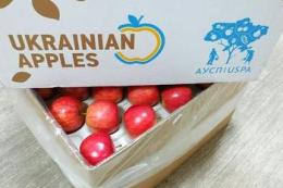 Коронавірус може активізувати експорт яблук