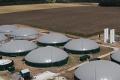МХП ввів в експлуатацію першу чергу найбільшого у світі біогазового комплексу