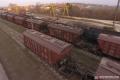 «Укрзалізниця» вдвічі збільшила кількість маршрутних зернових станцій