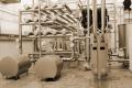 Для виробників молока в ЄС пропонують створити аварійну схему для утилізації молока