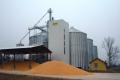 Трейдери знижують внутрішні ціни попиту на пшеницю