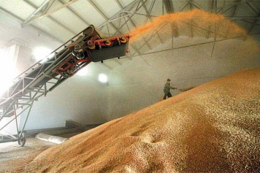 «Агротрейд» виконав план заготівлі ранніх зернових на 62%