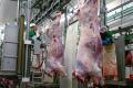 В Євросоюзі набули чинності нові стандарти щодо забою тварин