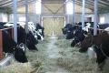 На Хмельниччині відкрили восьму сімейну молочну ферму