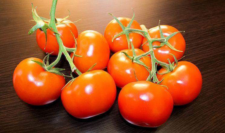 Новий тепличний комбінат у Криму почав збирати врожай томатів