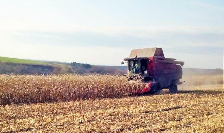 «Укрпромінвест-Агро» завершив збирати пізні зернові