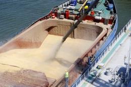 Мінекономіки узгодило граничний обсяг експорту пшениці в поточному сезоні