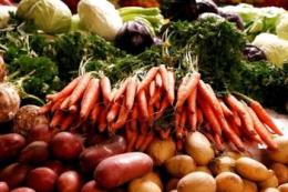 Овочеві культури в сівозміні підвищують прибутковість господарства, – думка