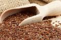 Україна в листопаді імпортувала рекордний обсяг насіння льону
